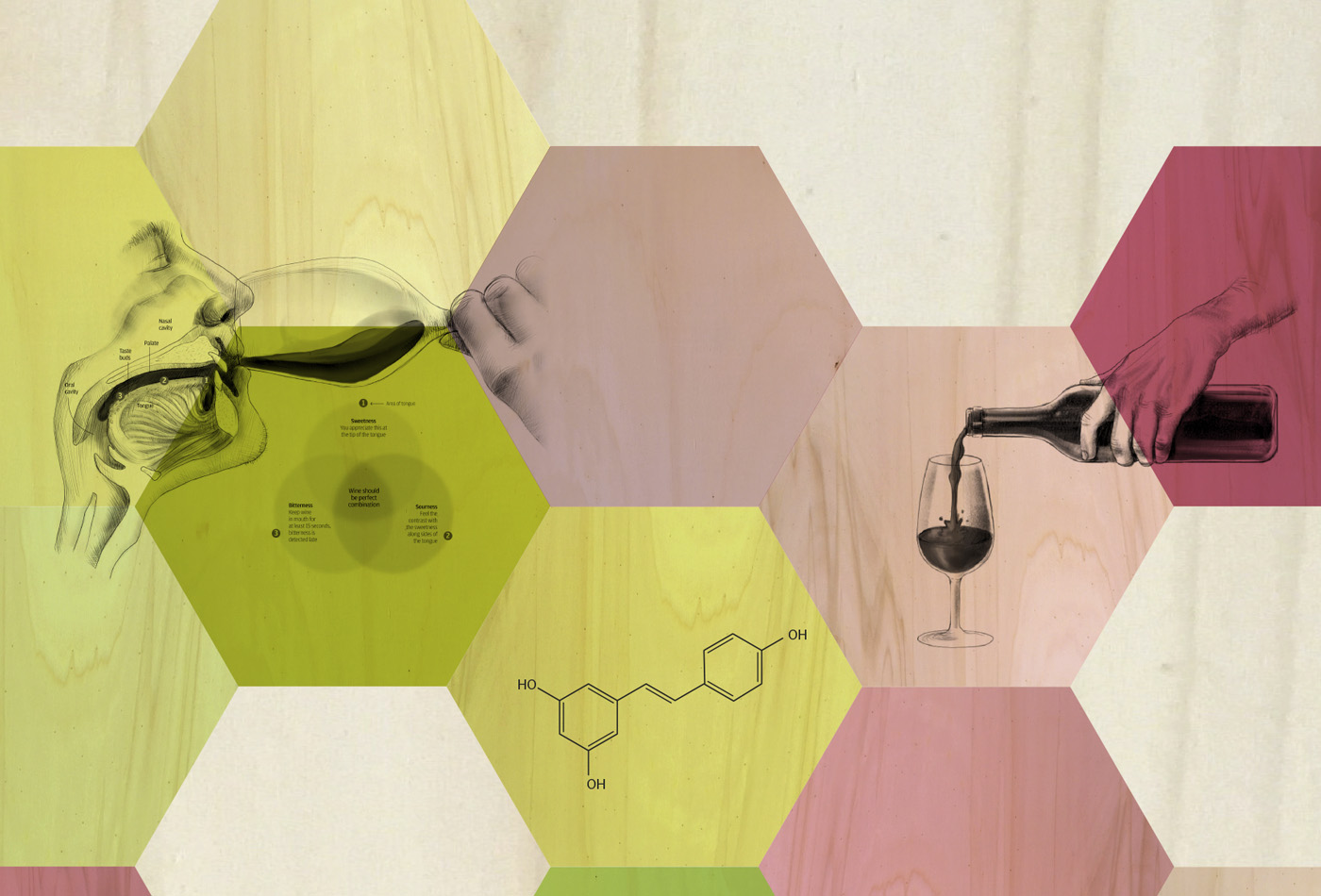 disseny-espai-the-alimentaria-experience-2016-vinorum-think