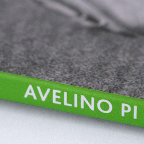 llibre-avelino-pi-fotografia-mini
