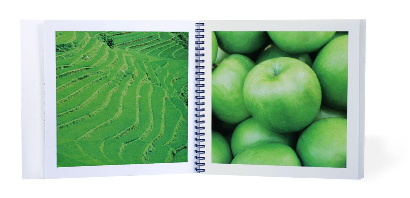 bcnvanguardia-alimentaria2012-creartiva